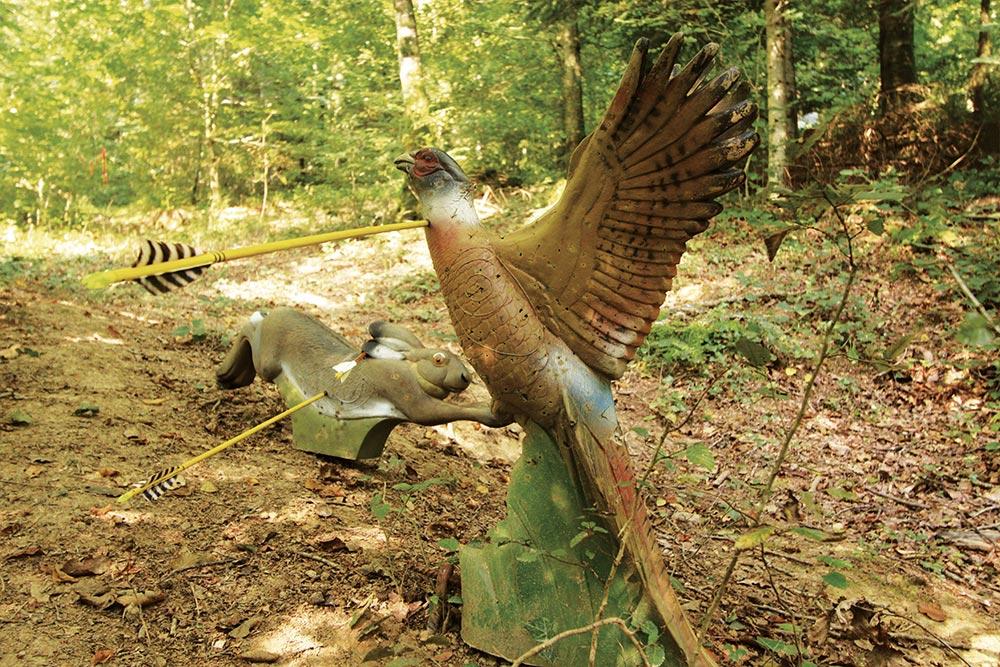 Tir à l'arc à Roche-sur-Linotte - 2 cibles animales