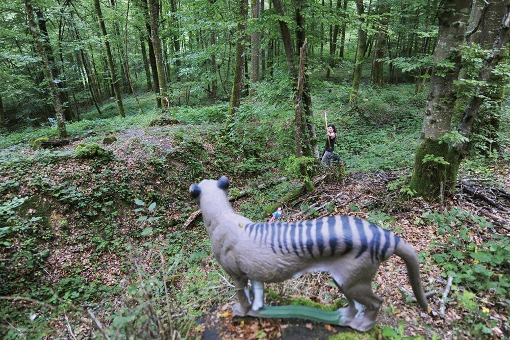 Tir à l'arc à Roche-sur-Linotte - Cible panthère