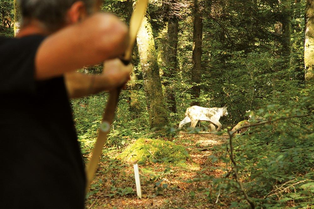 Tir à l'arc à Roche-sur-Linotte - Cible lynx